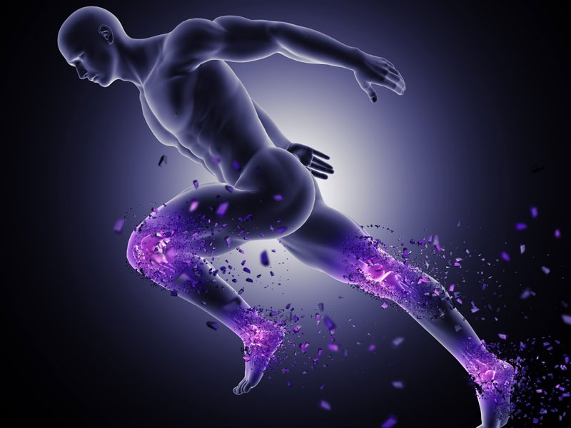 Poškodbe mišič- Rupture mišic